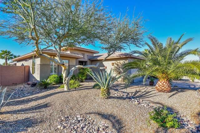16317 W Kearney Lane, Surprise, AZ 85387 (MLS #6014632) :: Kortright Group - West USA Realty