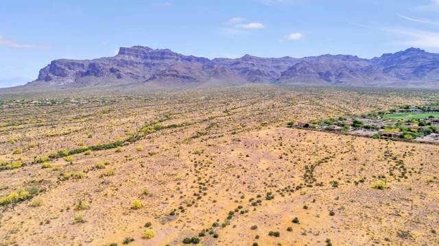 5950 E Southern C Avenue, Apache Junction, AZ 85119 (MLS #6014638) :: The Kenny Klaus Team