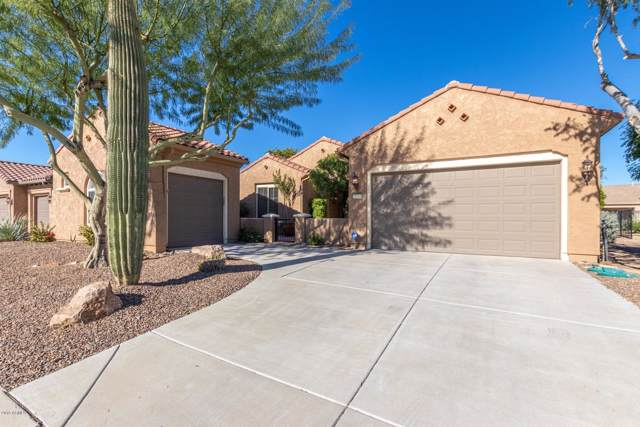 26366 W Tonopah Drive, Buckeye, AZ 85396 (MLS #6014665) :: Long Realty West Valley