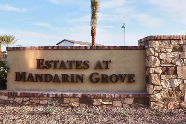 3733 E Jaeger Street, Mesa, AZ 85205 (MLS #6014784) :: The Garcia Group