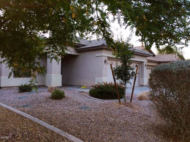 4142 N 126th Avenue, Litchfield Park, AZ 85340 (MLS #6014840) :: The Helping Hands Team