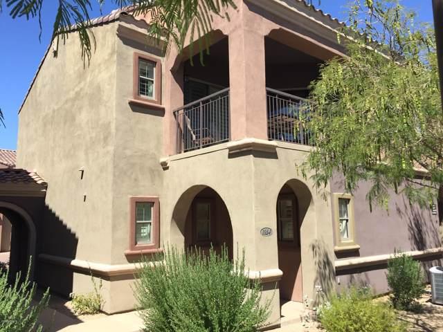 3935 E Rough Rider Road #1034, Phoenix, AZ 85050 (MLS #6015193) :: The Kenny Klaus Team