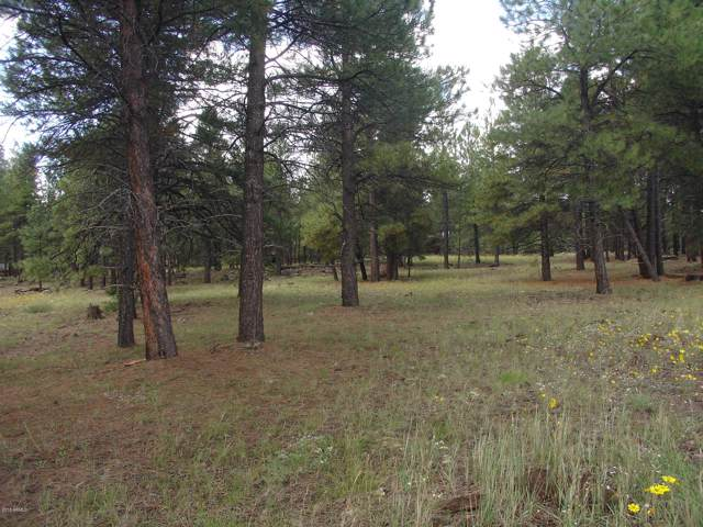2554 T E Mccullough, Flagstaff, AZ 86005 (MLS #6015941) :: Riddle Realty Group - Keller Williams Arizona Realty