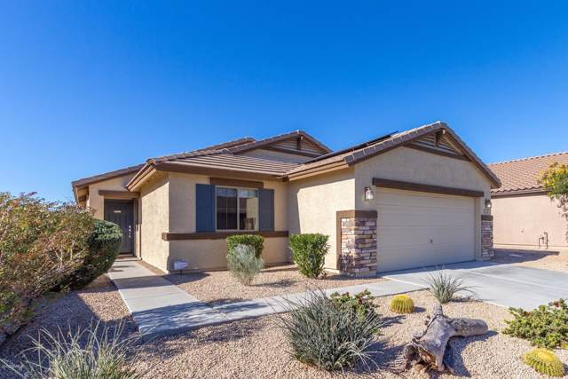 1332 S 238th Lane, Buckeye, AZ 85326 (MLS #6016082) :: The Kenny Klaus Team
