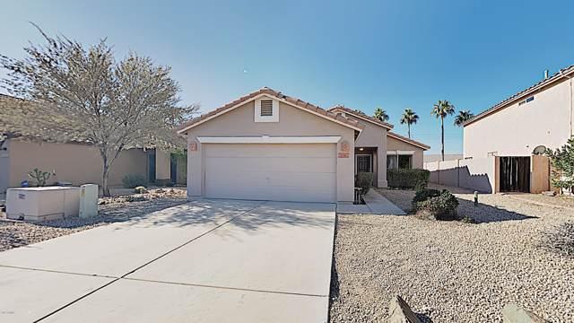20862 N 7TH Place, Phoenix, AZ 85024 (MLS #6016234) :: The Kenny Klaus Team