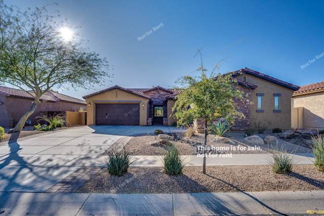 1809 W Horsetail Trail, Phoenix, AZ 85085 (MLS #6016329) :: The Laughton Team