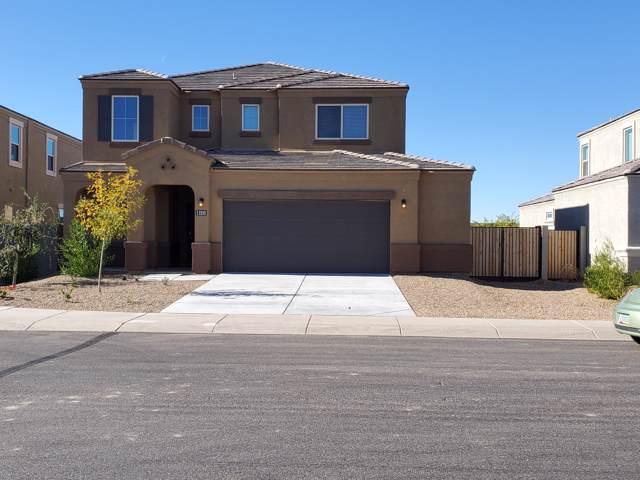 2333 E Alida Trail, Casa Grande, AZ 85194 (MLS #6016373) :: Brett Tanner Home Selling Team