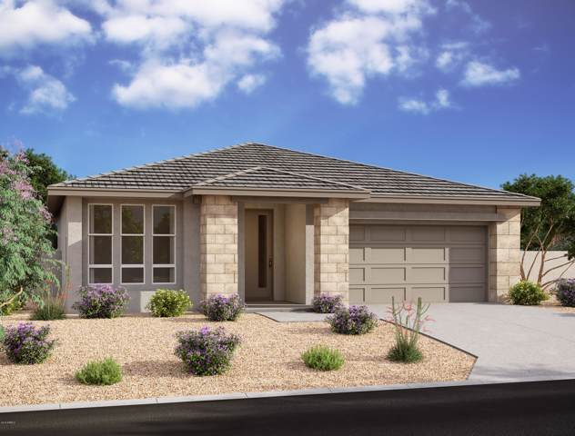 819 E Marblewood Way, Phoenix, AZ 85048 (MLS #6016846) :: Yost Realty Group at RE/MAX Casa Grande