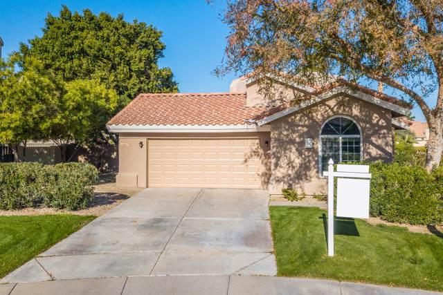 16627 S 33RD Street, Phoenix, AZ 85048 (MLS #6017215) :: CANAM Realty Group