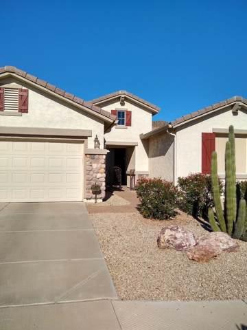 992 W Desert Lily Drive, San Tan Valley, AZ 85143 (MLS #6017399) :: Power Realty Group Model Home Center