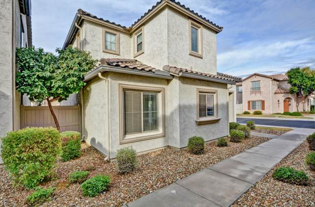 8403 W Lewis Avenue, Phoenix, AZ 85037 (MLS #6017552) :: The Kenny Klaus Team