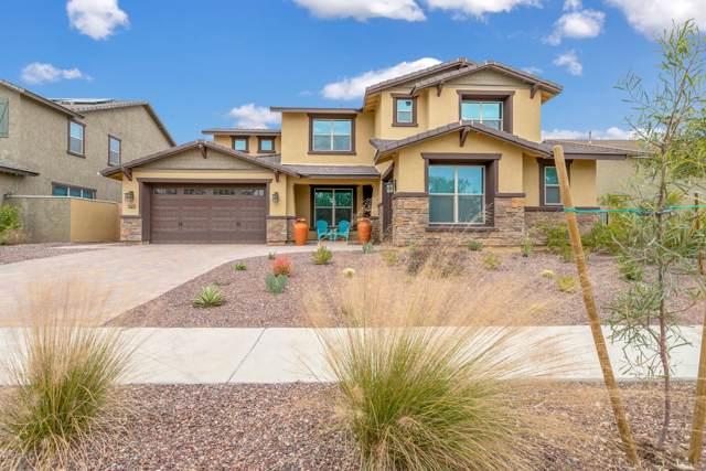 20436 W Briarwood Drive, Buckeye, AZ 85396 (MLS #6017763) :: The Kenny Klaus Team