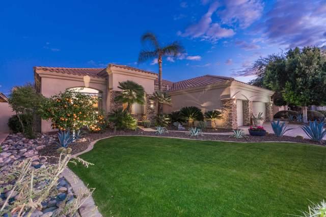 10251 N 103RD Place, Scottsdale, AZ 85258 (MLS #6018309) :: The Kenny Klaus Team