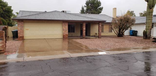 11607 S Half Moon Drive, Phoenix, AZ 85044 (MLS #6018380) :: Relevate | Phoenix