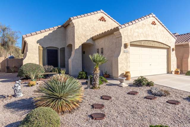 17216 W Desert Lane, Surprise, AZ 85388 (MLS #6018569) :: The Laughton Team
