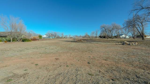 515 Grove Lane, Chino Valley, AZ 86323 (MLS #6018695) :: The Property Partners at eXp Realty