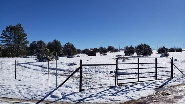 293 N Seeley Road, Young, AZ 85554 (MLS #6018864) :: Lucido Agency