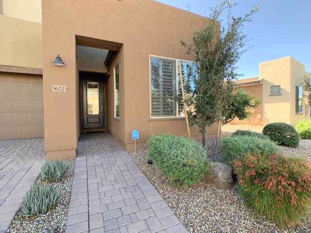 36223 N Desert Tea Drive, San Tan Valley, AZ 85140 (MLS #6019111) :: The Laughton Team