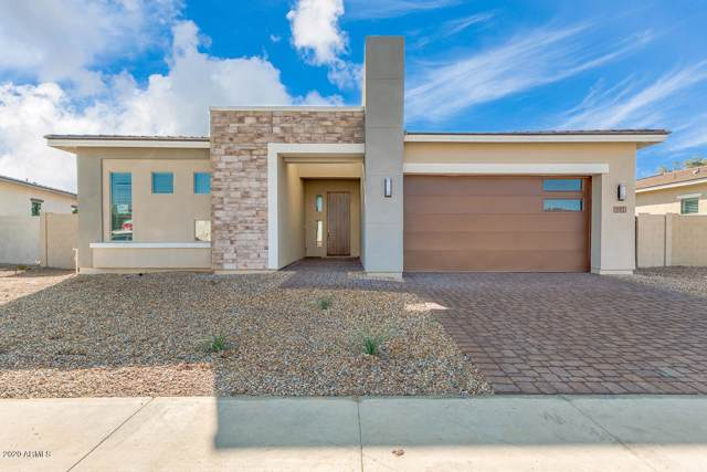 1193 E Nolan Place, Chandler, AZ 85249 (MLS #6019280) :: The Kenny Klaus Team