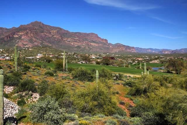 4161 S Avenida De Angeles, Gold Canyon, AZ 85118 (MLS #6019467) :: The Kenny Klaus Team
