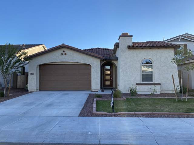 9773 W Robin Lane, Peoria, AZ 85383 (MLS #6019620) :: The Kenny Klaus Team