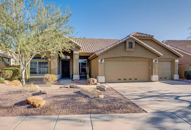 15225 S Foxtail Lane, Phoenix, AZ 85048 (MLS #6019749) :: Yost Realty Group at RE/MAX Casa Grande