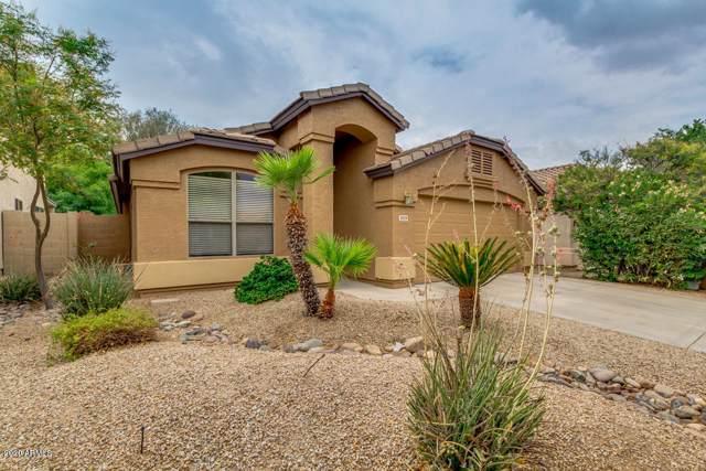 3939 E Potter Drive, Phoenix, AZ 85050 (MLS #6019897) :: The Kenny Klaus Team