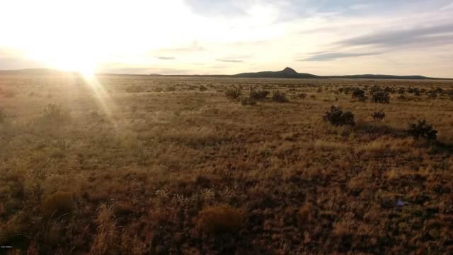 Lot 1156 Chosen Few Road, Seligman, AZ 86337 (MLS #6019929) :: Brett Tanner Home Selling Team