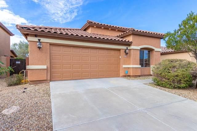11246 N 162ND Lane, Surprise, AZ 85379 (MLS #6020178) :: Arizona Home Group