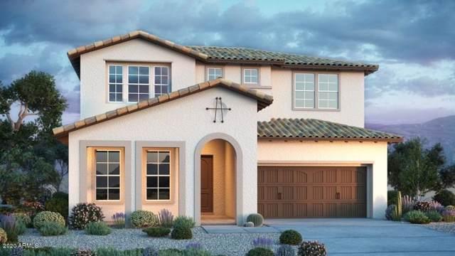 20853 E Reins Road, Queen Creek, AZ 85142 (MLS #6020304) :: Revelation Real Estate