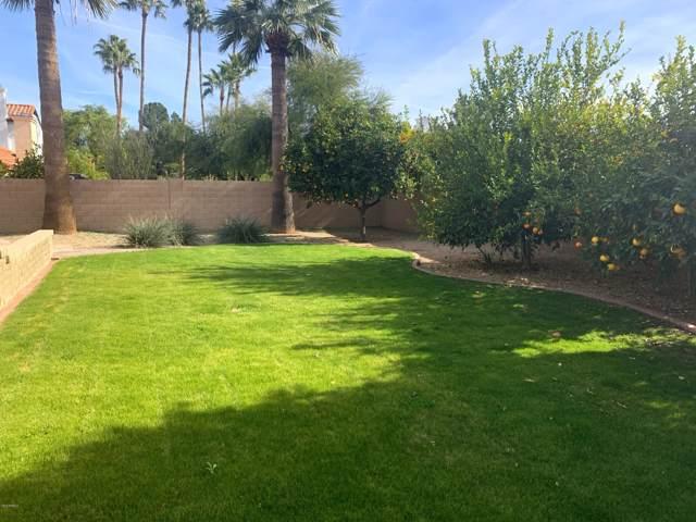 5731 E Marconi Avenue, Scottsdale, AZ 85254 (MLS #6020840) :: The Bill and Cindy Flowers Team