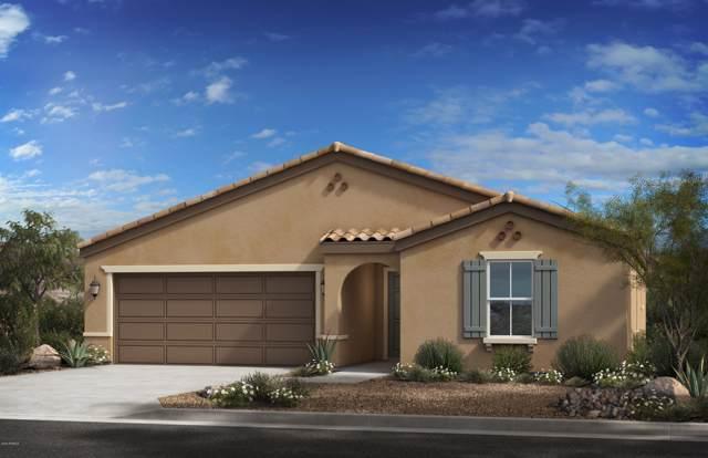 25562 W Milada Drive, Buckeye, AZ 85326 (MLS #6020920) :: The Kenny Klaus Team