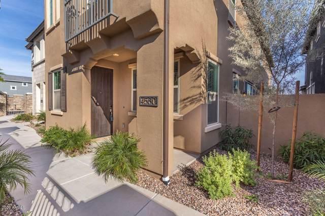 4560 S Felix Place, Chandler, AZ 85248 (MLS #6021232) :: The Kenny Klaus Team
