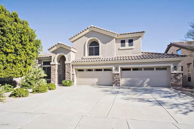 25563 N 68TH Lane, Peoria, AZ 85383 (MLS #6021361) :: Howe Realty