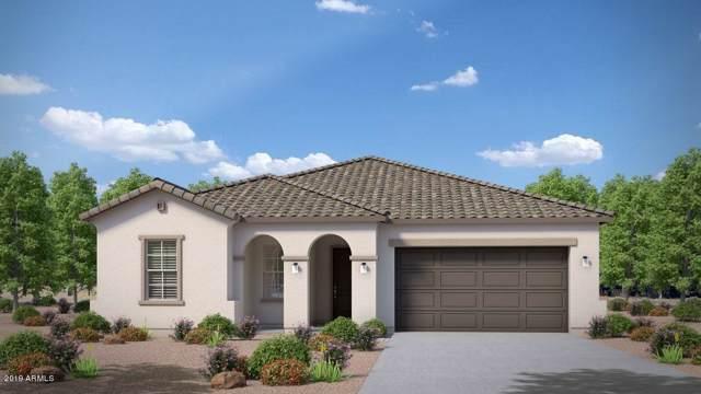 20991 E Via Del Sol, Queen Creek, AZ 85142 (MLS #6021528) :: Revelation Real Estate