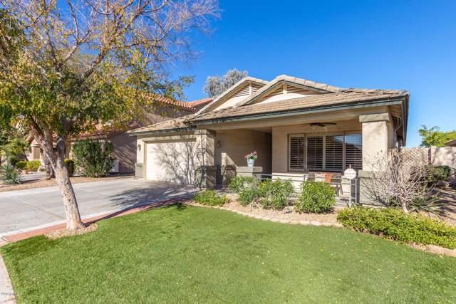 11216 W Roanoke Avenue, Avondale, AZ 85392 (MLS #6021557) :: Brett Tanner Home Selling Team