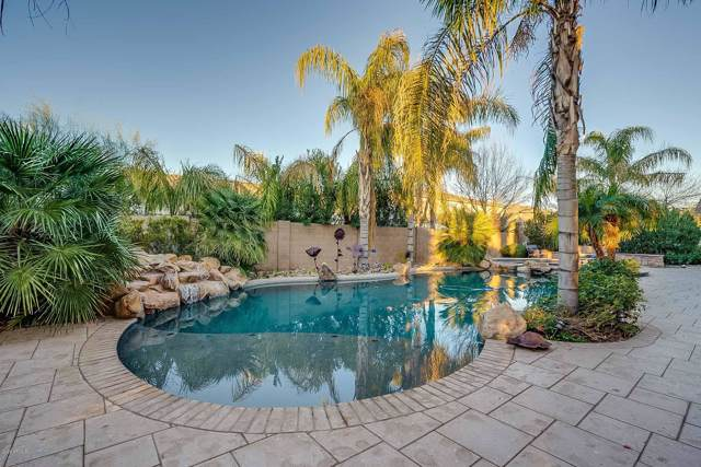 20306 E Calle De Flores, Queen Creek, AZ 85142 (MLS #6021574) :: The Kenny Klaus Team