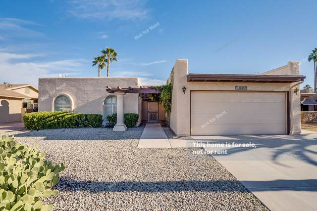 26437 S New Town Drive, Sun Lakes, AZ 85248 (MLS #6021617) :: The Kenny Klaus Team