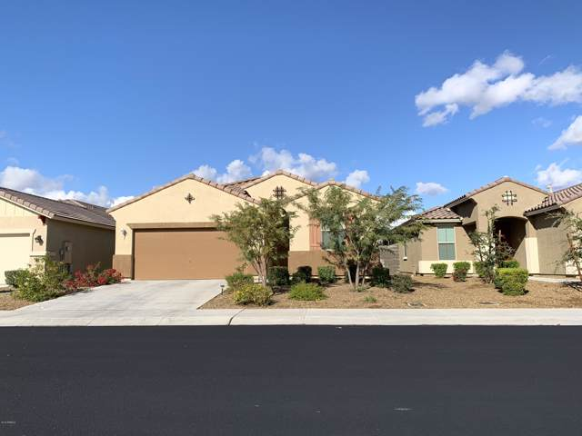 10152 W Townley Avenue, Peoria, AZ 85345 (MLS #6021709) :: Long Realty West Valley