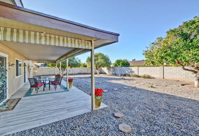 16402 N Desert Holly Drive, Sun City, AZ 85351 (MLS #6021724) :: The Kenny Klaus Team