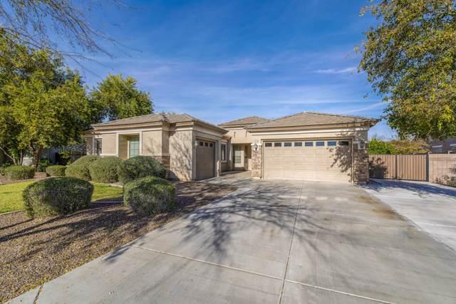 18728 E Egret Circle, Queen Creek, AZ 85142 (MLS #6021767) :: The Kenny Klaus Team