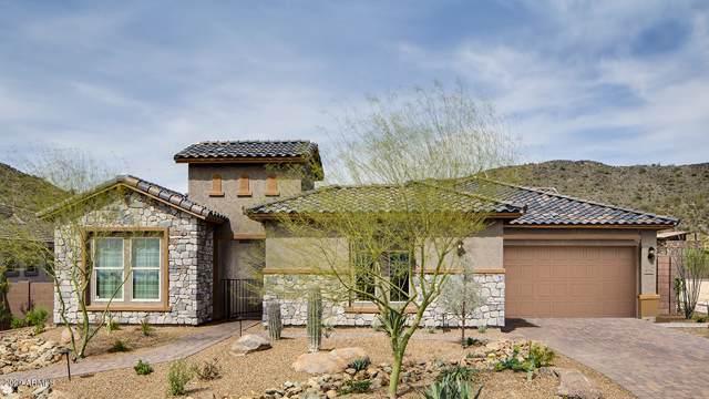 8716 W Artemisa Avenue, Peoria, AZ 85383 (MLS #6022029) :: Arizona Home Group