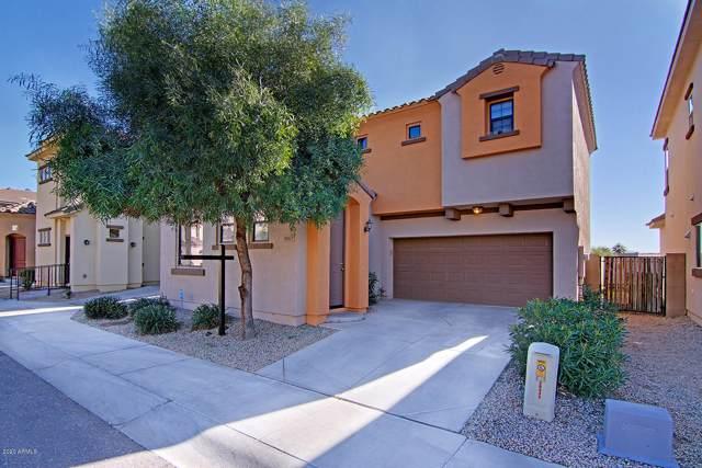 10317 W Monterosa Avenue, Phoenix, AZ 85037 (MLS #6022271) :: The Laughton Team