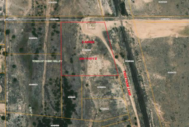 2590 Tree Farm Lane, Chino Valley, AZ 86323 (MLS #6022286) :: Arizona 1 Real Estate Team