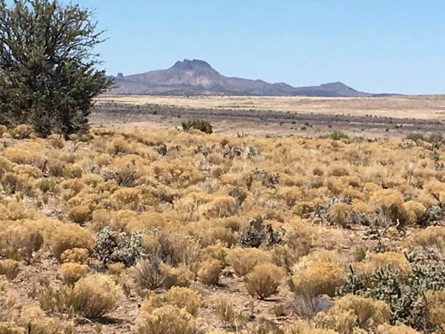Lot 144 Great Western Road, Wikieup, AZ 85360 (MLS #6022291) :: The Ellens Team