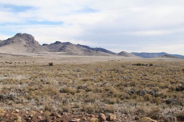 Lot 148 Great Western Road, Wikieup, AZ 85360 (MLS #6022294) :: The Ellens Team