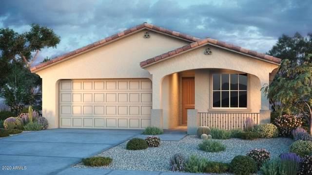 21957 S 203rd Place, Queen Creek, AZ 85142 (MLS #6022323) :: The Kenny Klaus Team