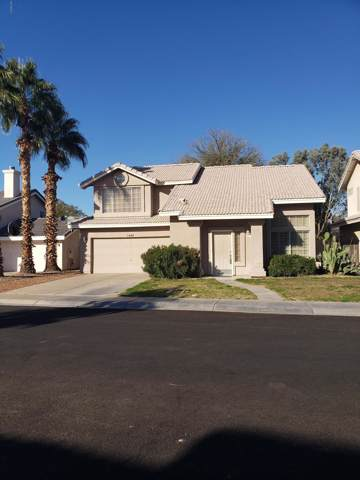 1448 E Gail Drive, Chandler, AZ 85225 (MLS #6022460) :: The Property Partners at eXp Realty