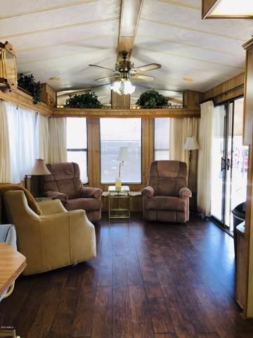 328 S Shoshone Drive, Apache Junction, AZ 85119 (MLS #6022532) :: The Kenny Klaus Team