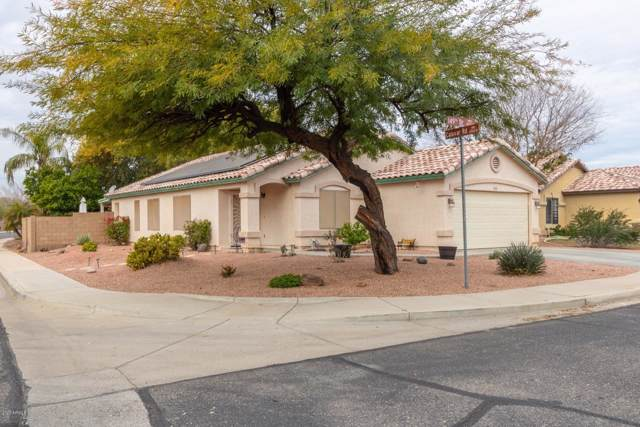 13902 N 149TH Drive, Surprise, AZ 85379 (MLS #6022558) :: Team Wilson Real Estate